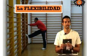 Video sobre la FLEXIBILIDAD