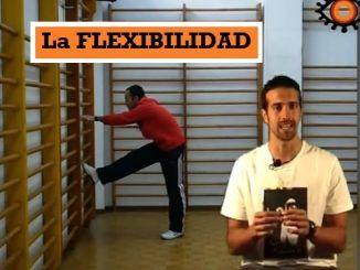 [VÍDEOS] Capacidad Física Básica: la FLEXIBILIDAD
