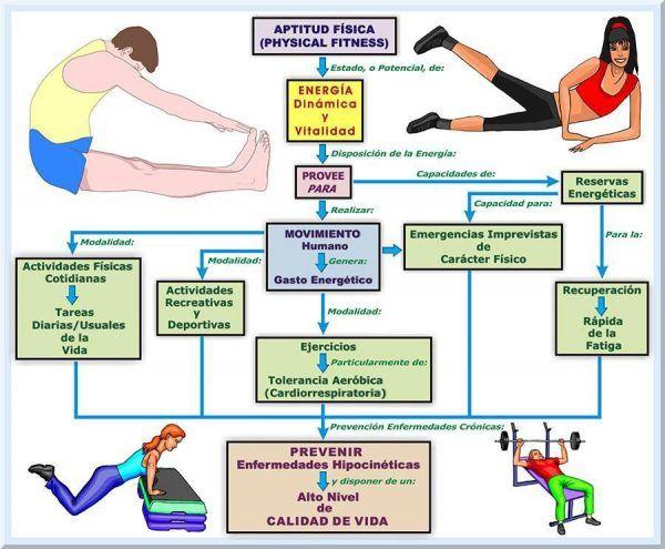 diferencia esteroides anabolicos naturales