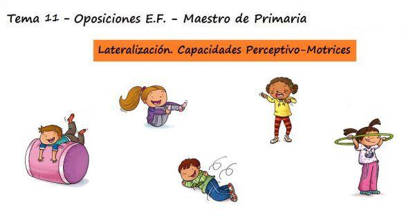 Tema 11 Oposiciones Educacion Fisica Maestro Primaria