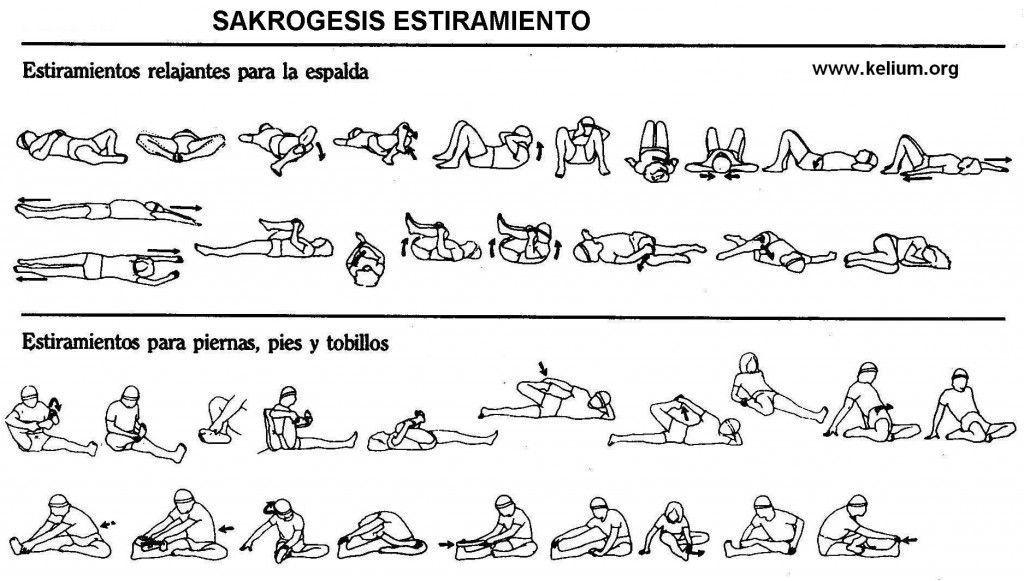 El Estiramiento. La clave para mantenerte Flexible