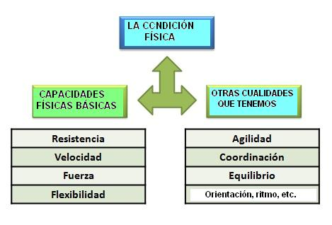 CUALIDADES FISICAS BASICAS DOWNLOAD