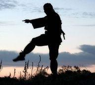 Las artes marciales y la educación física