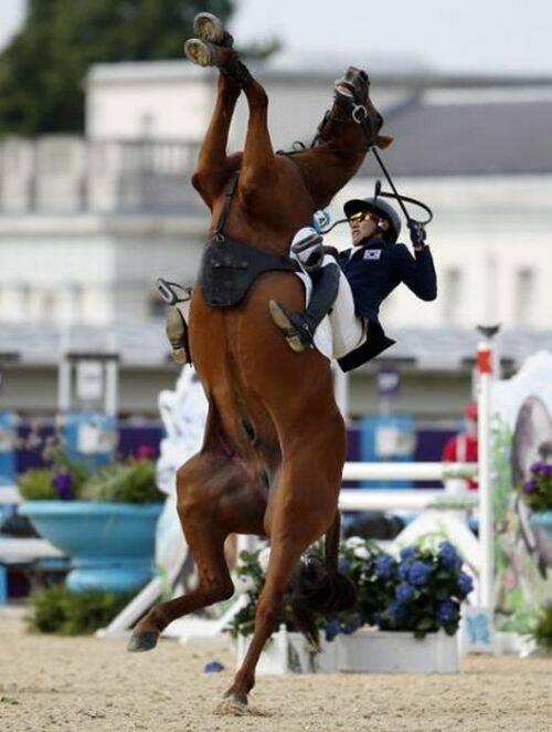foto salto caballo