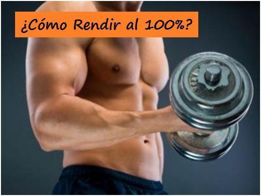 entrenamientos de musculacion