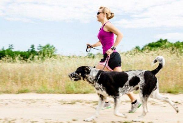 Salir a Correr con tu Perro