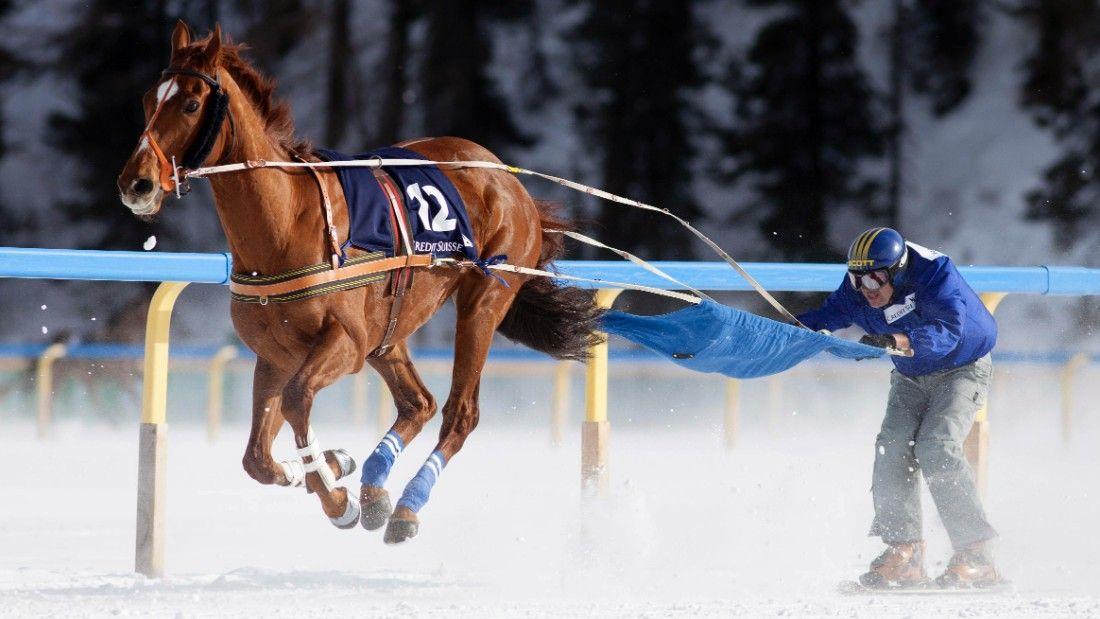 Deporte con Caballo y Nieve