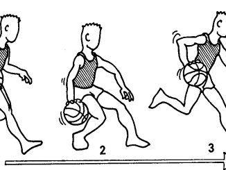 La TÉCNICA DEL BOTE para el baloncesto